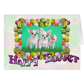 Chihuahua puppies Easter card