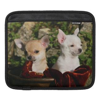 Chihuahua Puppies iPad Sleeve