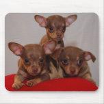 Chihuahua puppies mouse mats