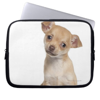 Chihuahua puppy (2 months old) laptop sleeve