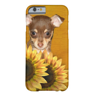 Chihuahua puppy and sunflowers barely there iPhone 6 case