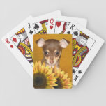 "Chihuahua puppy and sunflowers playing cards<br><div class=""desc"">Brown and tan,  or fawn,  chihuahua puppy with sunflowers dog lovers playing cards</div>"