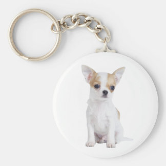 Chihuahua puppy basic round button keychain