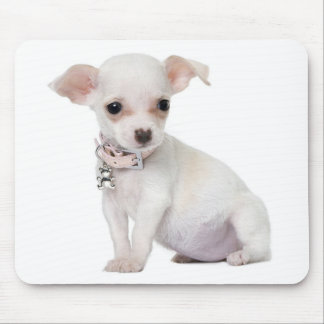 Chihuahua  Puppy Dog Computer Mousepad