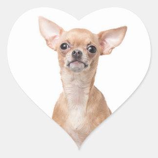 Chihuahua Puppy Dog Heart Heart Sticker