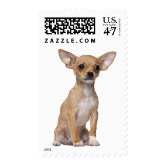 Chihuahua Puppy Dog Love US Postage Stamps
