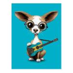 Chihuahua Puppy Dog Playing Bahamas Flag Guitar Postcard