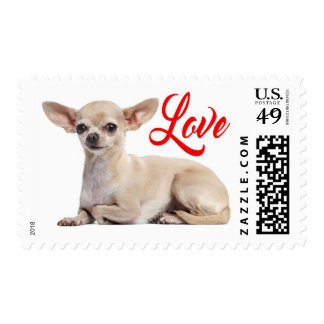 Chihuahua Puppy Dog Red Love Postage