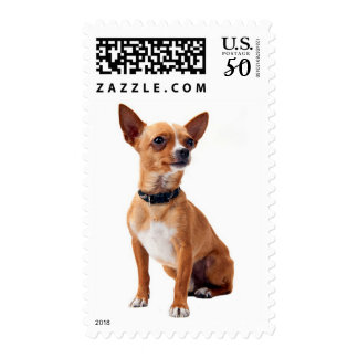Chihuahua Puppy Dog US Postage Stamps