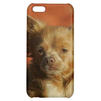 Chihuahua Puppy Headshot iPhone 5C Cover
