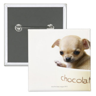 Chihuahua puppy in bowl (cropped) 2 inch square button