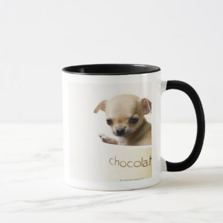 Chihuahua puppy in bowl (cropped) mug