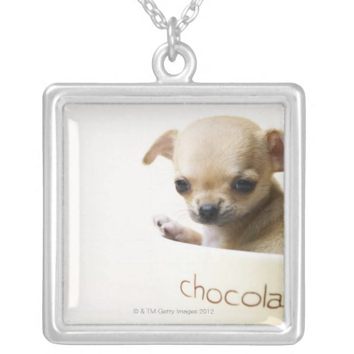Chihuahua puppy in bowl (cropped) square pendant necklace