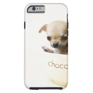 Chihuahua puppy in bowl (cropped) tough iPhone 6 case