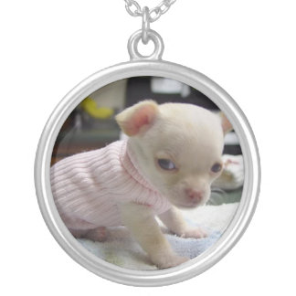 Chihuahua Puppy in Pink Sweater Necklace