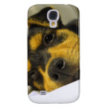 Chihuahua Puppy iPhone 3G Case Samsung Galaxy S4 Cases