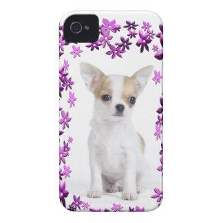Chihuahua puppy iPhone 4 Case-Mate case
