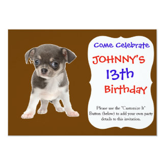 Chihuahua puppy standing of white background card