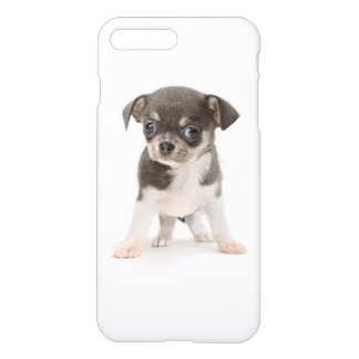 Chihuahua puppy standing of white background iPhone 8 plus/7 plus case