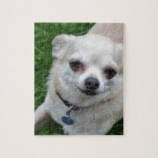 Chihuahua Rompecabezas Con Fotos