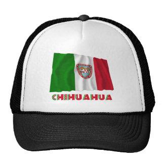 Chihuahua que agita la bandera oficiosa gorro