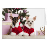 Chihuahua Sitting And Wearing A Christmas Suit Greeting Card