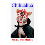 Chihuahua Small But Mighty Breed Postcards