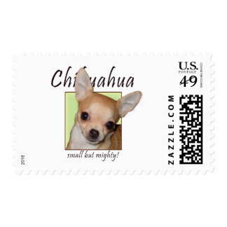 Chihuahua, Small but Mighty Stamps