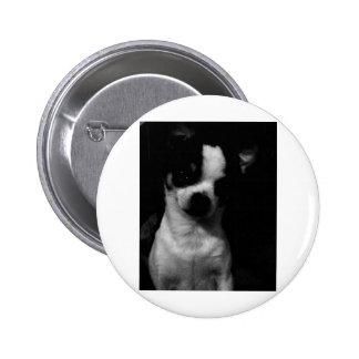Chihuahua Small Dog Pinback Buttons