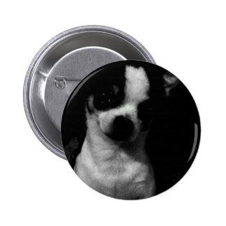 Chihuahua Small Dog Pin