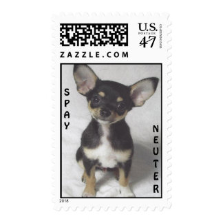 Chihuahua, Spay & Neuter Postage