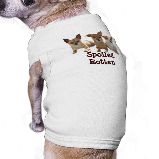 Chihuahua Spoiled Rotten Dog T-Shirt