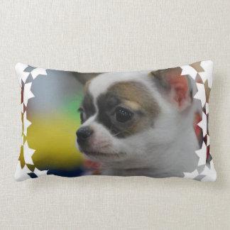 Chihuahua Star Pillows