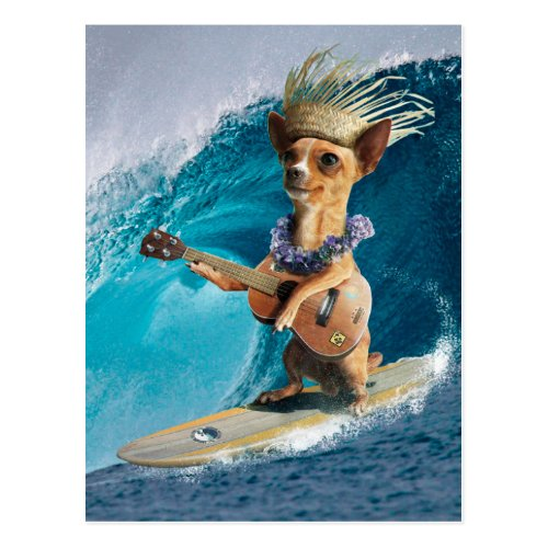 Chihuahua surfing and playing guitar postcard