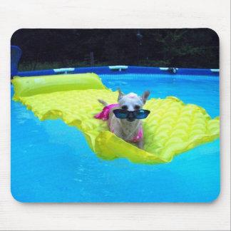 chihuahua swimsuit mousepad