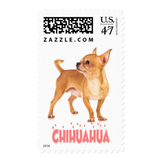 Chihuahua Tan And White Puppy Dog Pink Love Postage