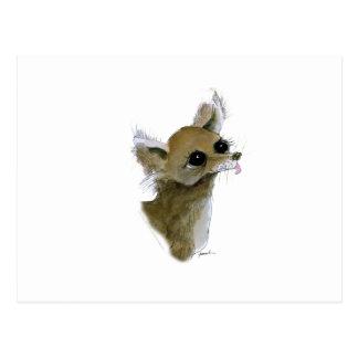 Chihuahua, tony fernandes postcard