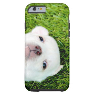 chihuahua tough iPhone 6 case