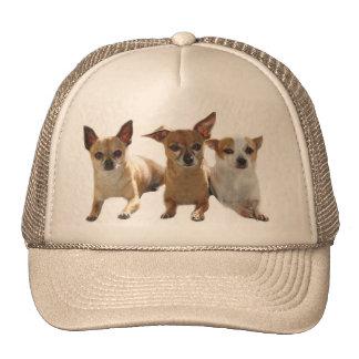 Chihuahua Trio Hat