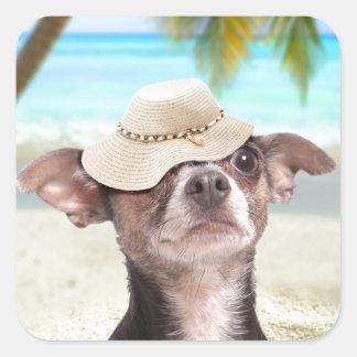 Chihuahua tropical el vacaciones pegatina cuadrada