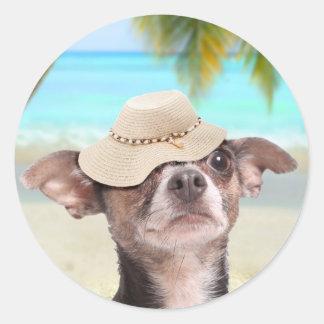 Chihuahua tropical el vacaciones pegatina redonda