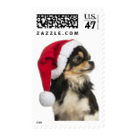 Chihuahua wearing a christmas hat postage