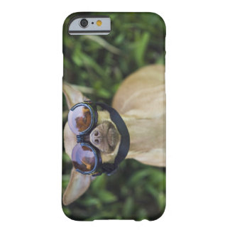 Chihuahua wearing goggles barely there iPhone 6 case