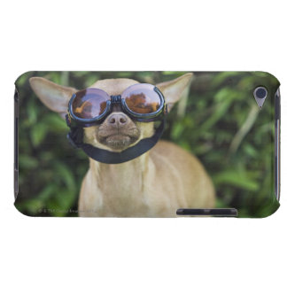 Chihuahua wearing goggles barely there iPod covers