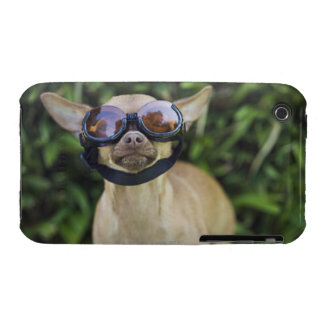 Chihuahua wearing goggles Case-Mate iPhone 3 case