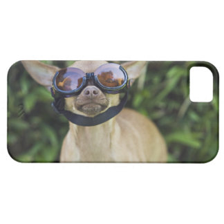 Chihuahua wearing goggles iPhone SE/5/5s case