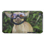 Chihuahua wearing goggles iPod Case-Mate case