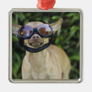 Chihuahua wearing goggles metal ornament