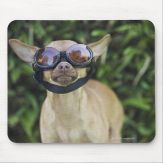 Chihuahua wearing goggles mouse pad