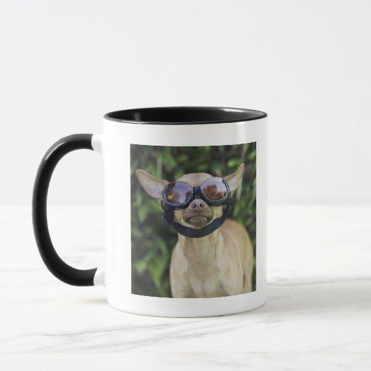 Chihuahua wearing goggles mug